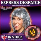 70's FANCY DRESS WIG ~ TINSEL WIG SILVER