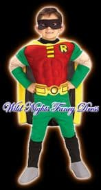 Boys Muscle Chest Robin Costume