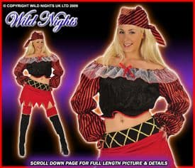 Deluxe 5 Piece PIrate Lady Costume