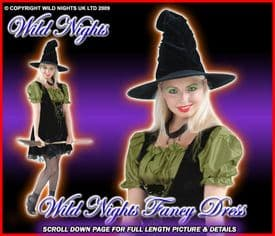 HALLOWEEN COSTUME SEXY MAGIC SPELL WITCH