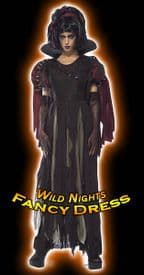 Halloween Ladies Unhappily Ever After Snow Fright Costume