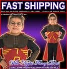 Harry Potter Deluxe Quidditch Robe Costume