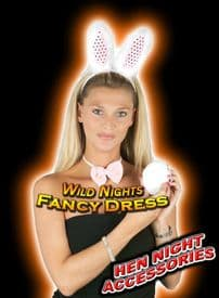 HEN NIGHT- BUNNY GIRL INSTANT PARTY KIT PINK